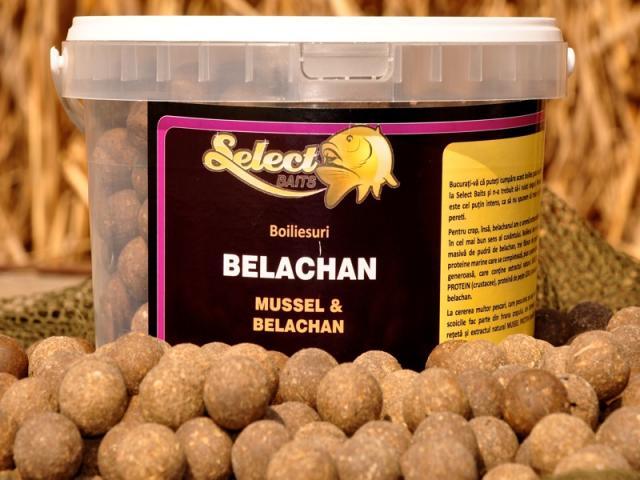 Captura de 15kg la BELACHAN