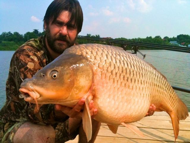 HOT FISH prinde pe Moara Vlasiei 2