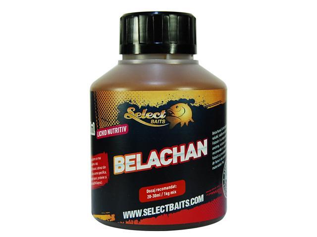 Belachan