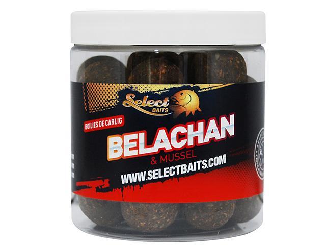 Belachan critic echilibrat