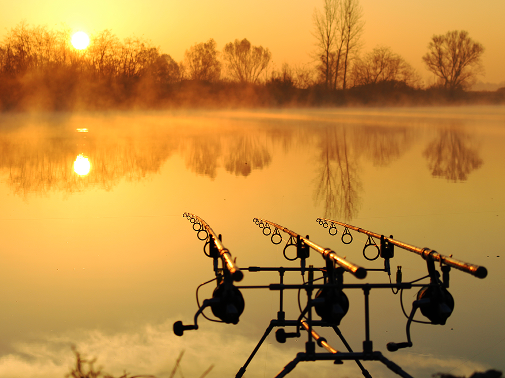 WELCOME TO SELECT BAITS!